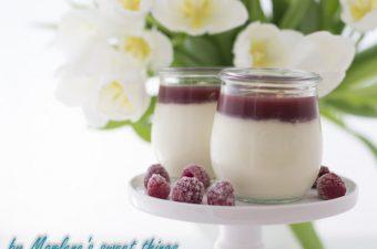 Panna Cotta mit Himbeer und Cranberry Fruchtsauce