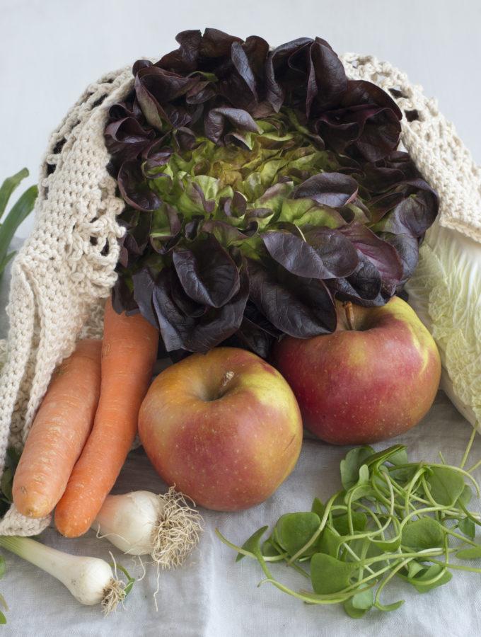 Früchte und Gemüse Saisonkalender März4